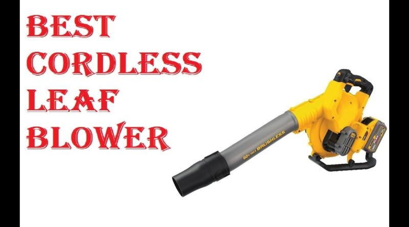 Top 10 Best Cordless Leaf Blowers Review